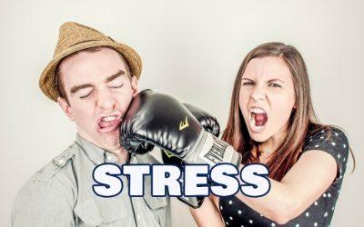 Stress da ristrutturazione? Chelli offre un massaggio rilassante!